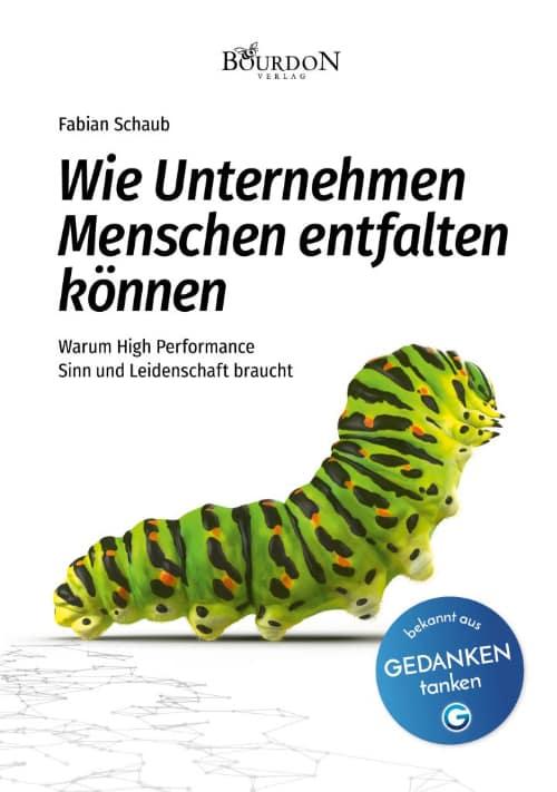 FabianSchaub_Cover_Titel-klein